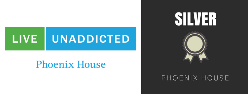 Silver Sponsor Phoenix House